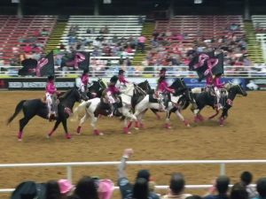 Mesquite Rodeo Breast Cancer Awareness 02